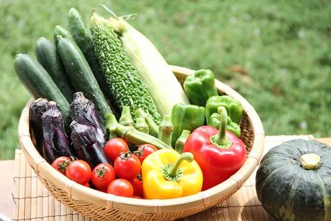 夏野菜カレーに入れる人気の野菜具材と調理の仕方は?[料理tags] 8
